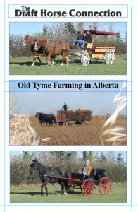 Old Tyme FarmingIn Alberta DVD