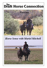 Horse sense with Muriel Mitchell