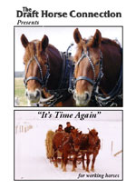 It's time again for working horses